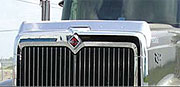 International 9900 Hoodshield Bug Deflector