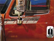 International Lonestar Door Trim